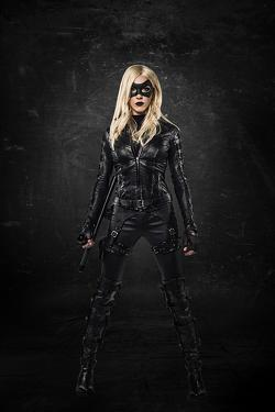 Arrow Black Canary Katie Cassidy