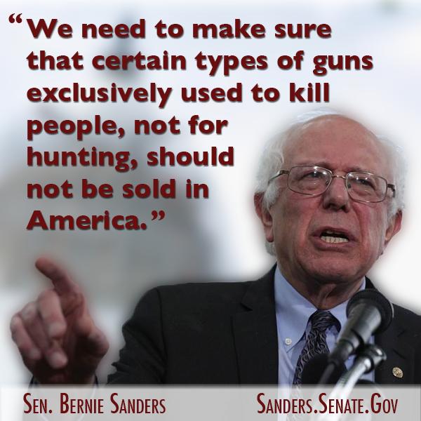 Sanders on Guns